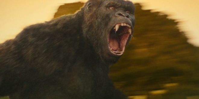 Kong-Skull-Island-2017-movie-Still-3-1024x683